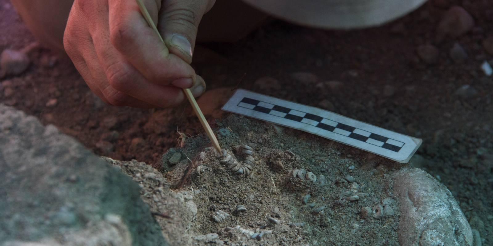 Encuentran un cementerio indígena de más de 1.300 años en el subte