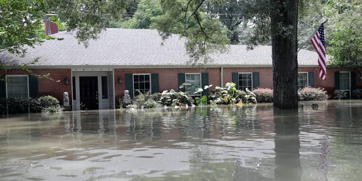 Autoridades: 60 muertos por Harvey en Texas