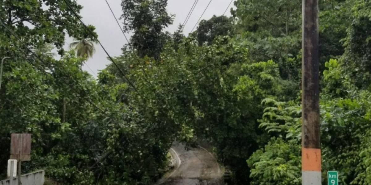 Registran carreteras obstruidas en Guaynabo