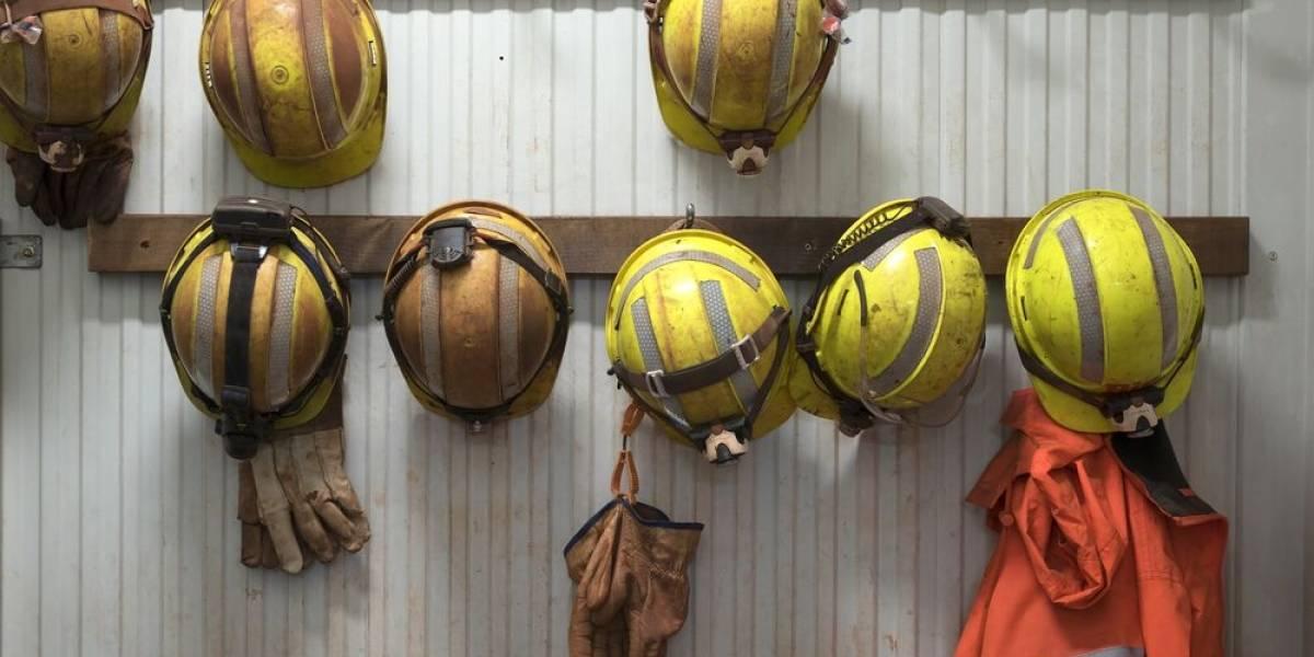 Minería: 86% de los técnicos profesionales encuentra trabajo al primer año de egreso