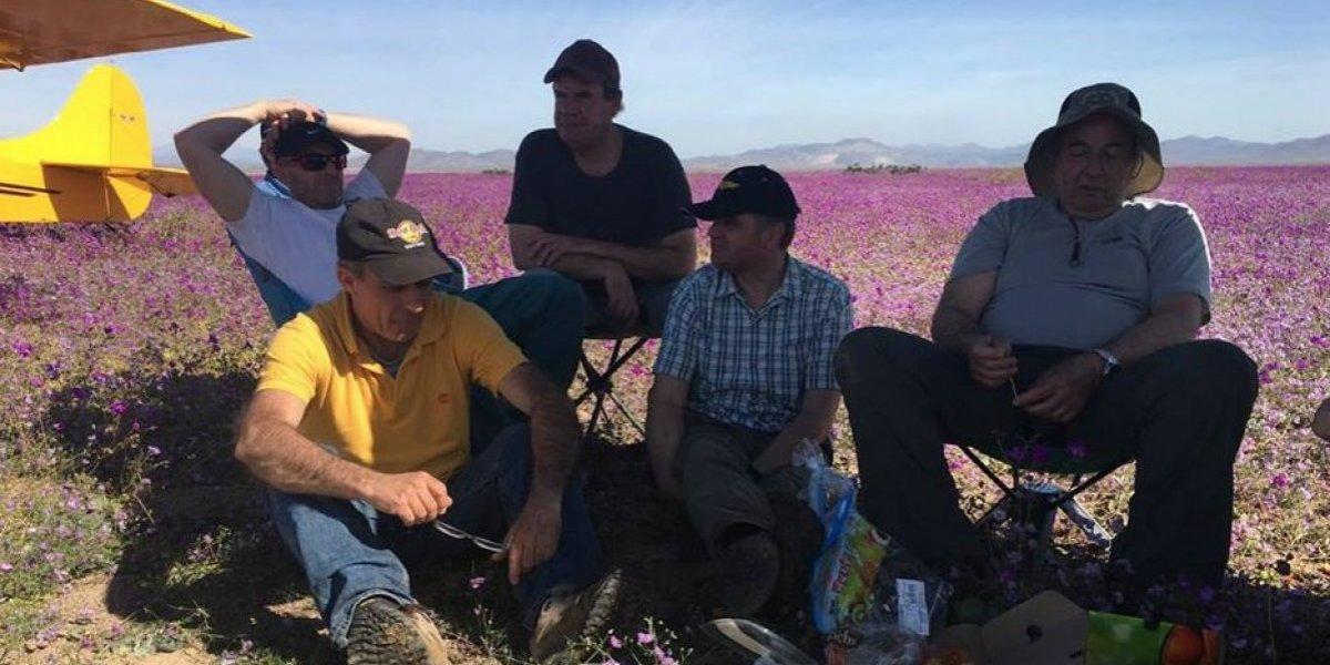 No hay perdón por el desierto florido: Alcaldesa de Caldera no cree que el aterrizaje fue producto de una emergencia