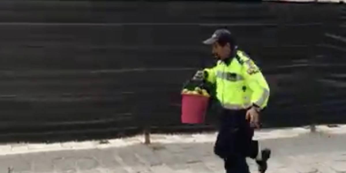 Viral: Acción de Policía Municipal es criticada en Ecuador