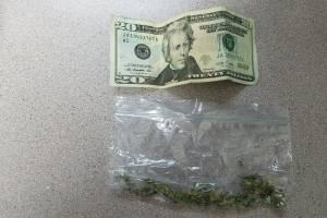 marihuana - Cayey