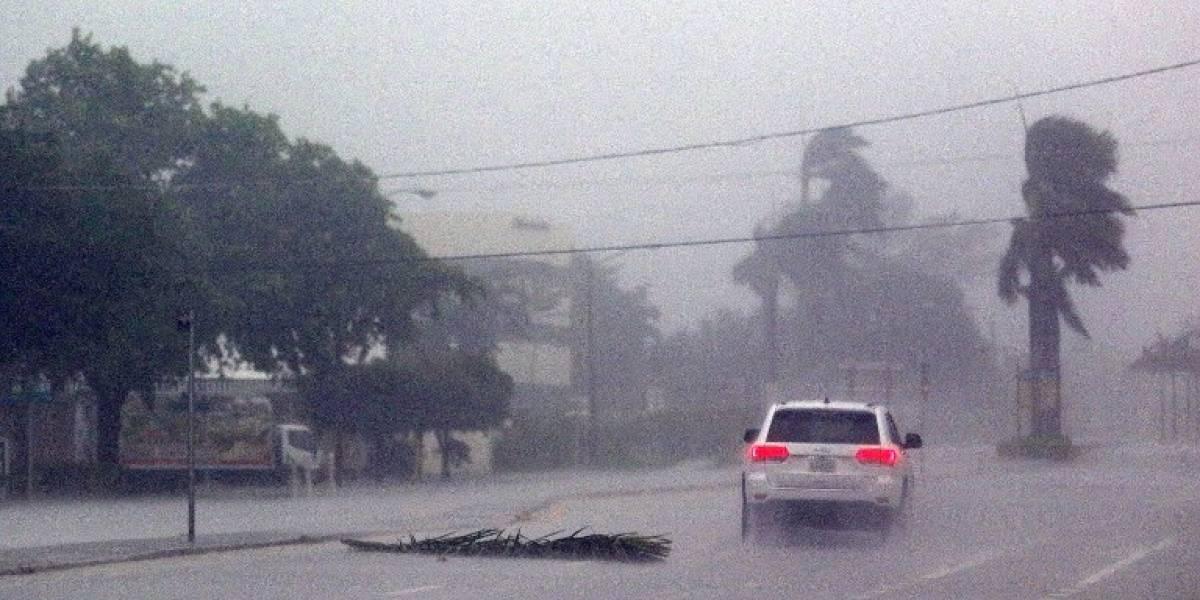 VIDEO. Colapsa una grúa de construcción por los intensos vientos en Miami