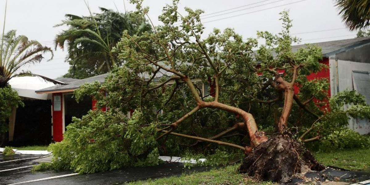 Multimillonaria devastación en EEUU: daños provocados por huracanes Irma y Harvey alcanzan los US$290 mil millones