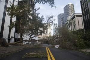 Daños dejados por el huracán Irma en Miami