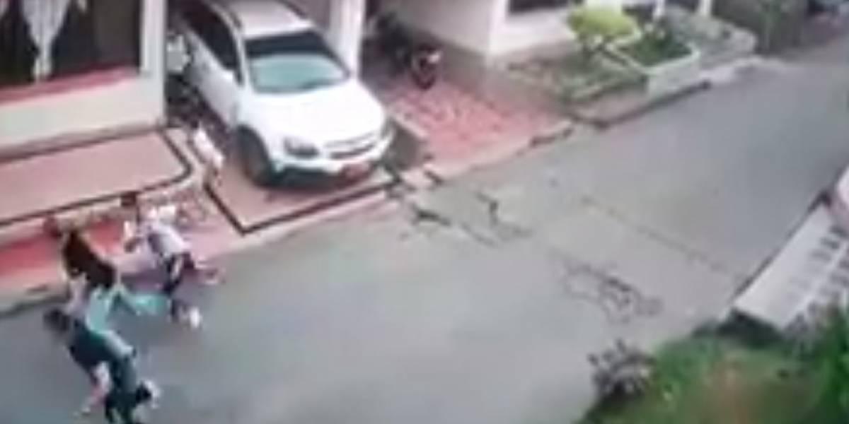 Video: perro salvó a su familia humana de un robo