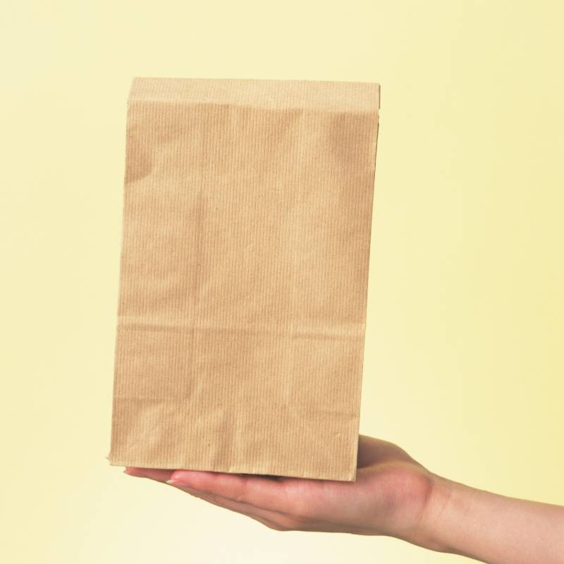 Image of Right Hand Holding a Paper Bag