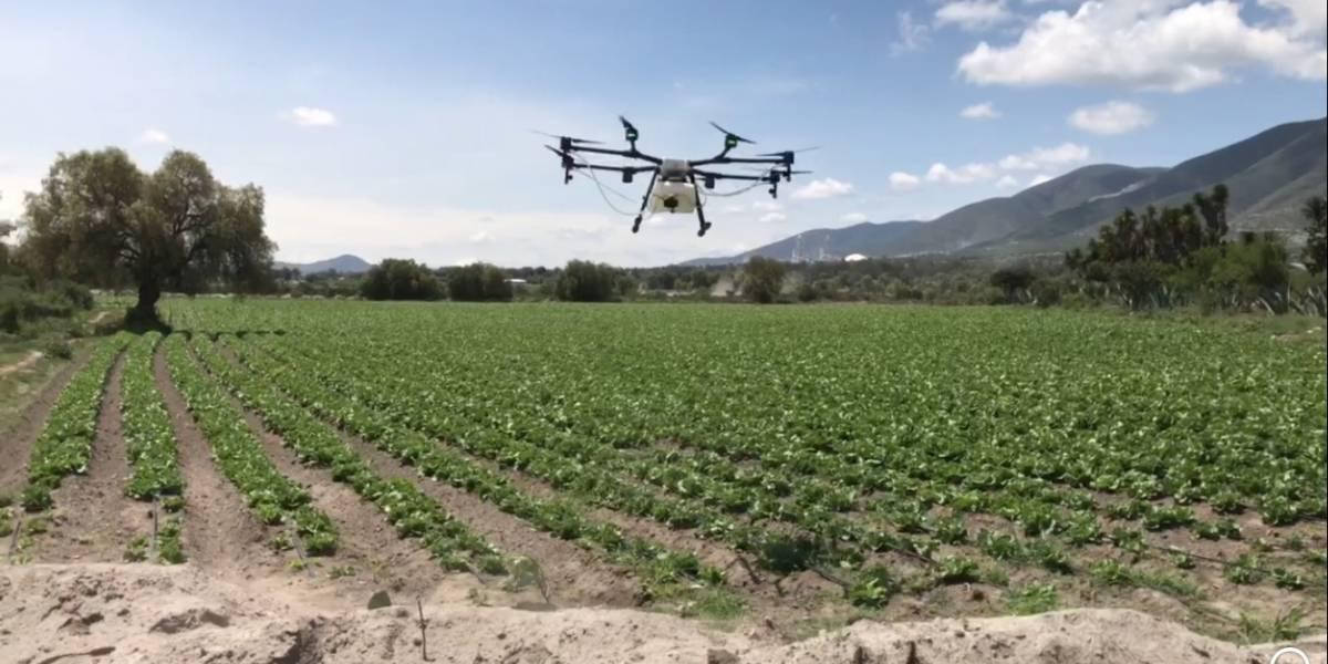 Drones pueden ayudar a recuperar el campo luego de sismo y huracanes