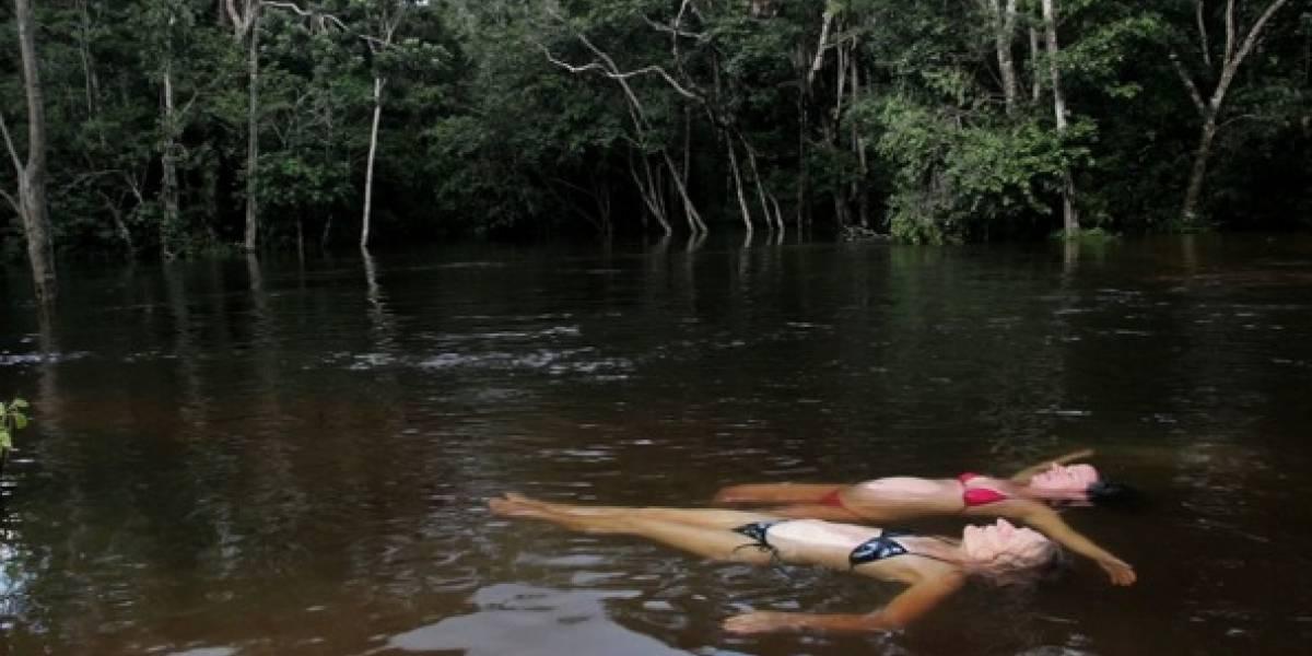 'Pariente' y 'Amazona', las películas nominadas por Colombia al Óscar y al Goya