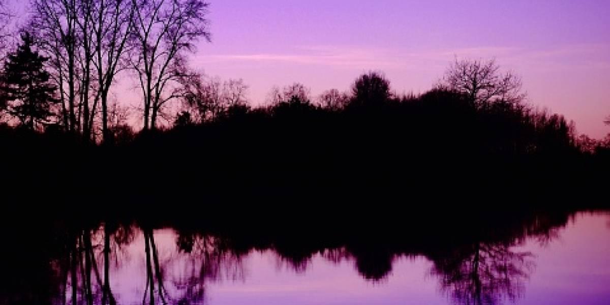 Un lago ruso se volvió violeta