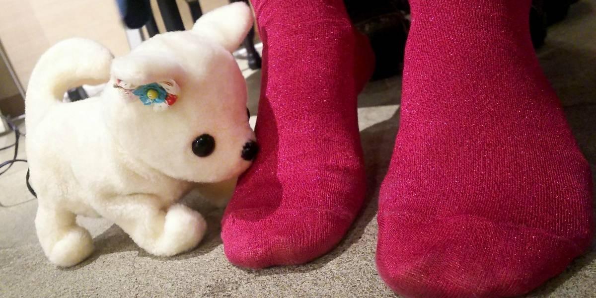"""Si te lo regalan es por algo: crean perro robot que """"identifica"""" el olor de los pies y se desmaya si huelen mal"""