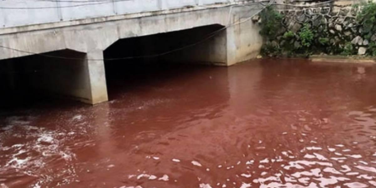 """Ni en sus peores pesadillas: el nauseabundo """"río de sangre"""" que horrorizó a los habitantes de una ciudad China"""