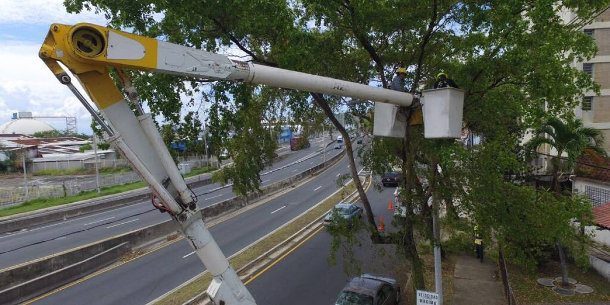 AEE concentra trabajos de restablecimiento en zona metro