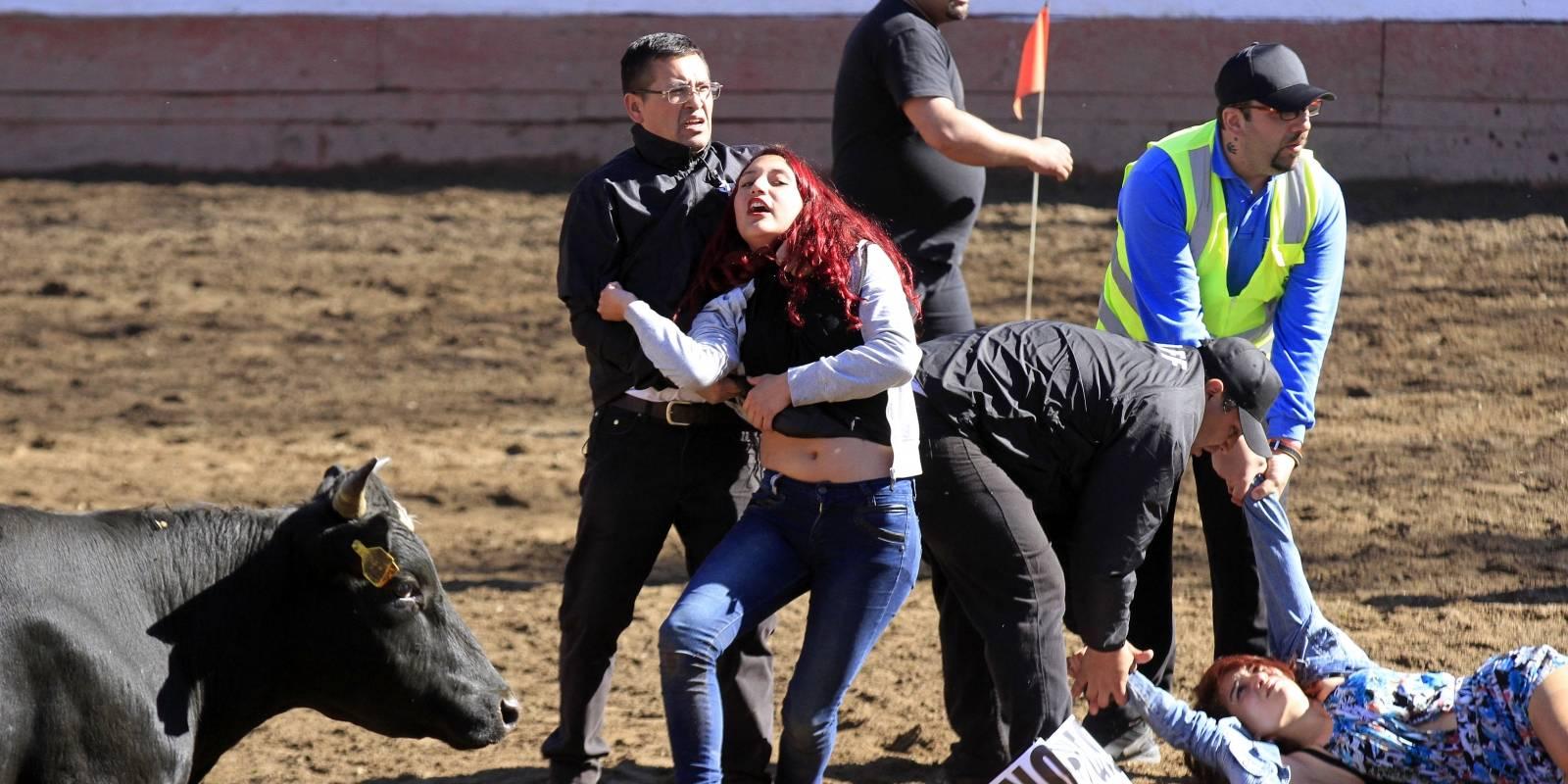 Activistas interrumpen rodeo en el Parque Padre Hurtado