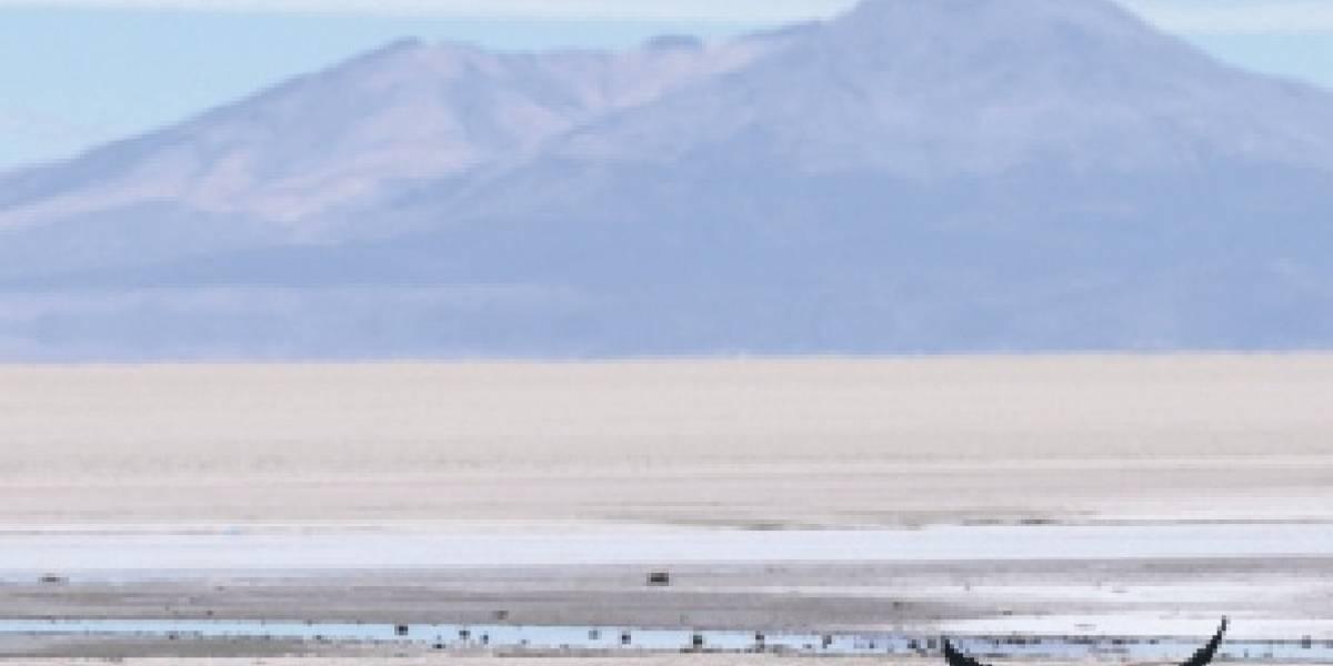 Imperdibles de Bolivia: qué ver y qué hacer