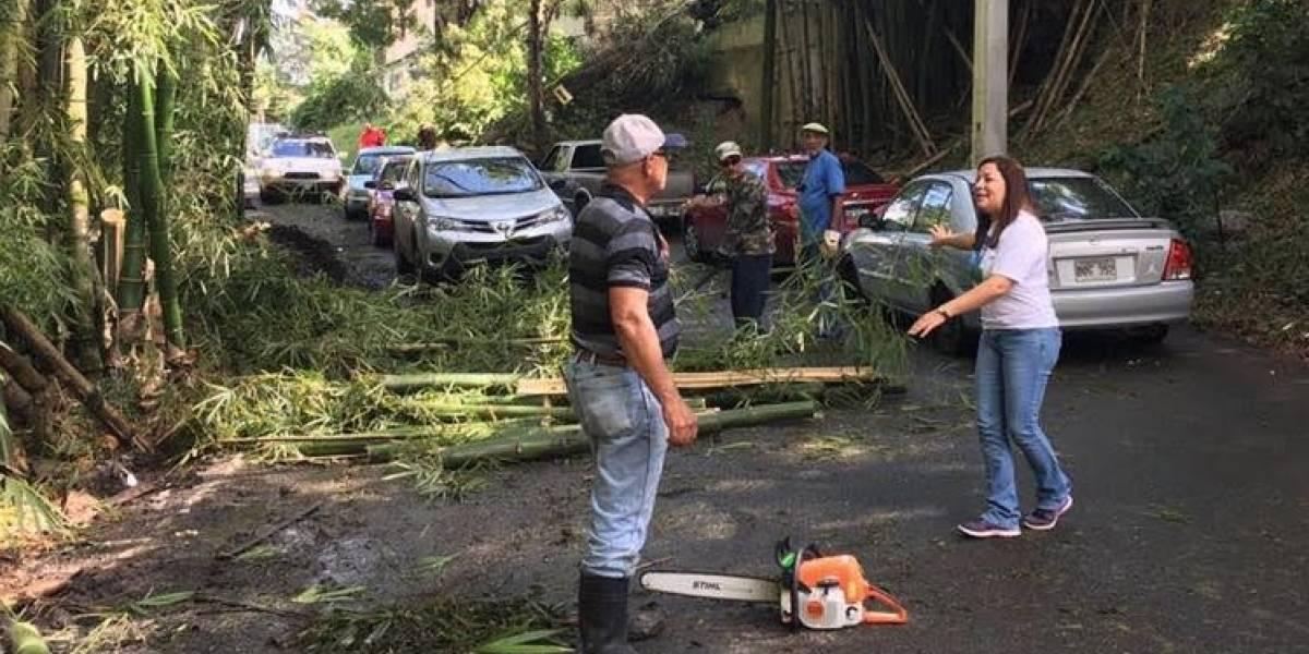 Morovis a oscuras entre huracán y huracán