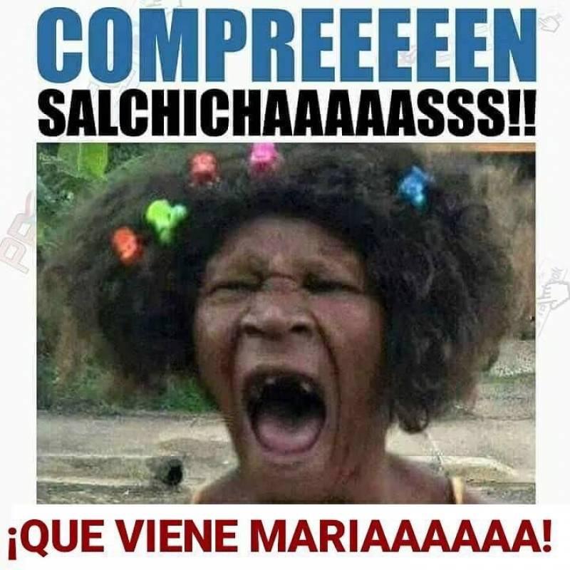 whatsapp image 20170918 at 1.28.33 pm 800x800 huracán maría no se salva de los memes metro
