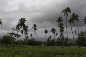 puertoricopreparallegadahuracanmaria7.jpg