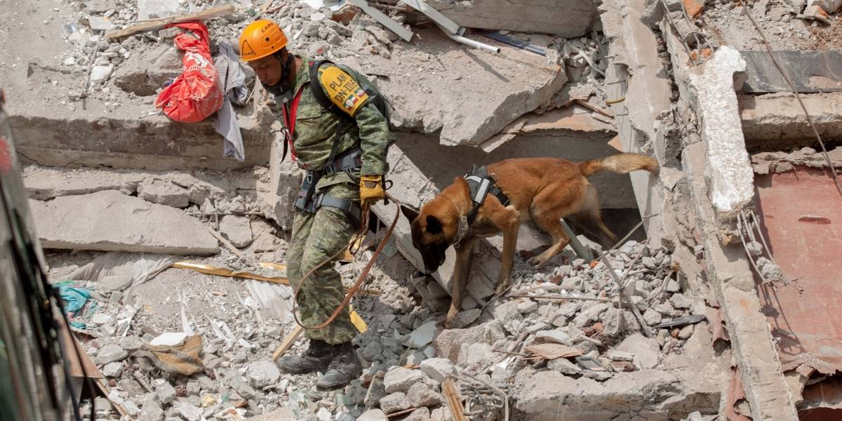 Más de 80% de inmuebles revisados tras sismo son habitables, dice Mancera