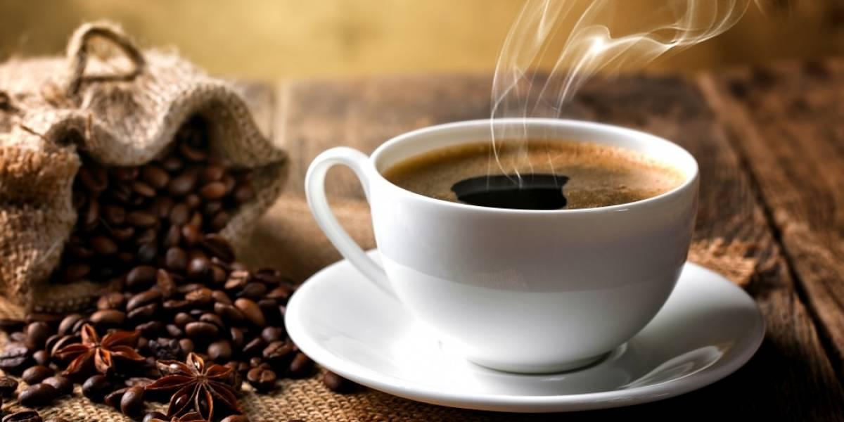 Os benefícios e os malefícios do café na sua saúde