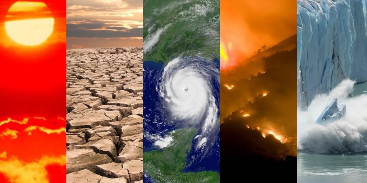 Los impresionantes efectos tras el nuevo récord de temperatura del Mundo en los últimos 138 años
