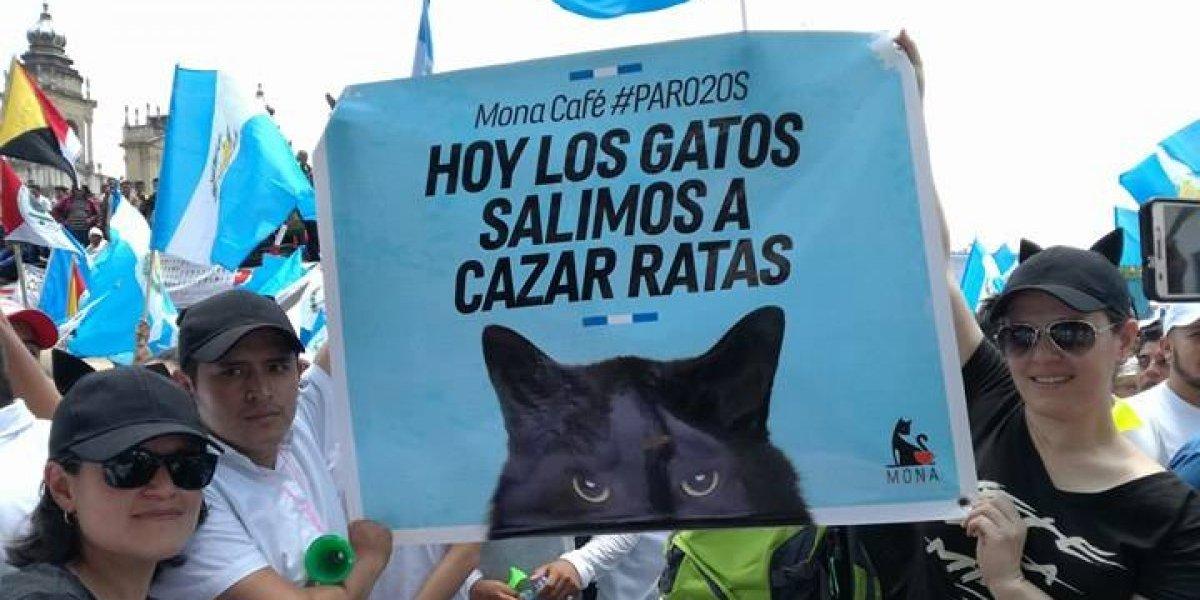 #20S: Los carteles de la indignación
