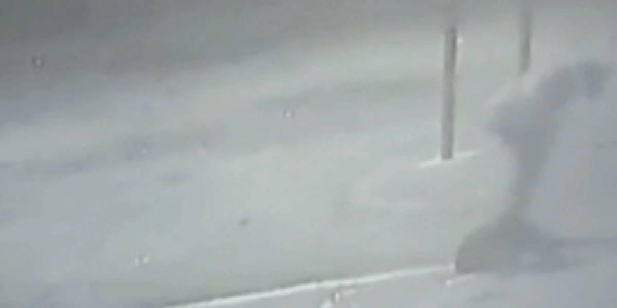 Hombre le propinó brutal golpiza a mujer en un parque de Bogotá