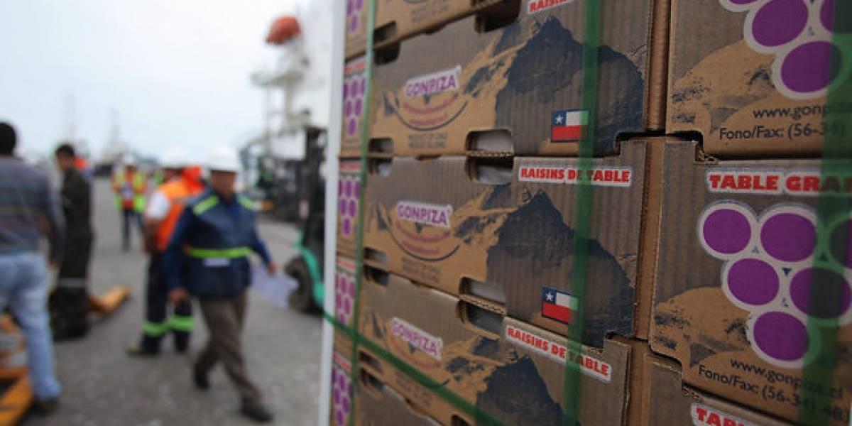 Importadores chinos y de EEUU tendrán cita en el encuentro frutícola de Chile