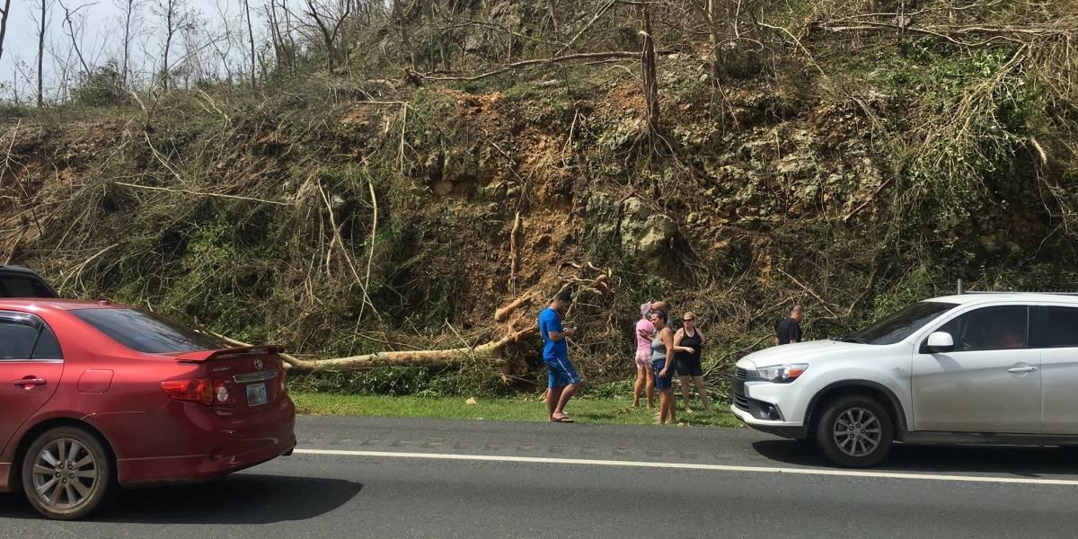 Todavía hay cuatro pueblos en Puerto Rico sin nada de conexión celular