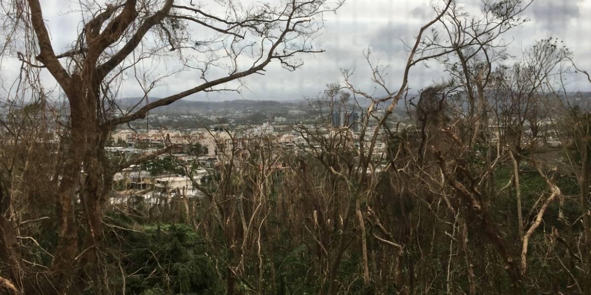 Fotos: Así está Guaynabo tras el paso de María