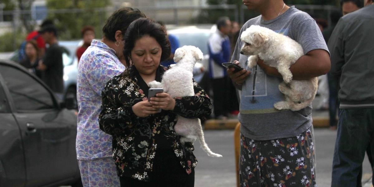 Estas son las imágenes que dejó el último sismo en México