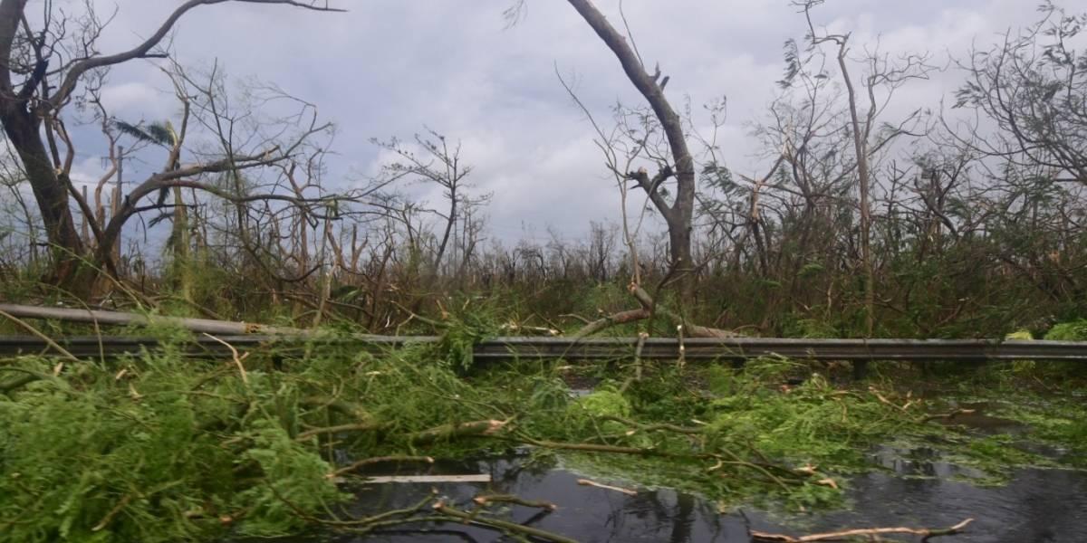 FEMA operará desde la base Roosevelt Roads