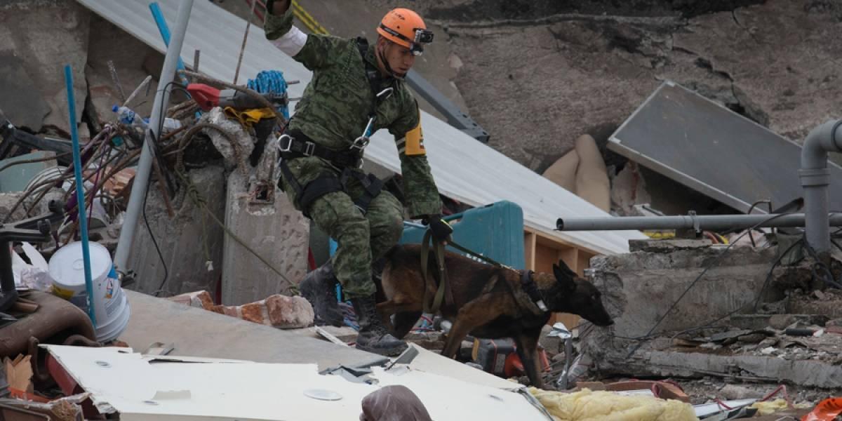 Nuevo sismo de 6,1 sacude México y causa pánico