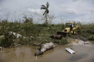 https://www.publimetro.com.mx/mx/noticias/2017/09/23/evacuan-en-puerto-rico-a-70-mil-personas-presa-danada.html
