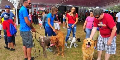 feria guayaquil mascotas