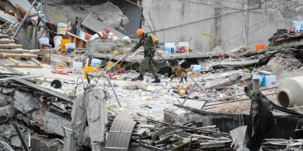 Aumenta a 324 el número de fallecidos por sismo del 19-S