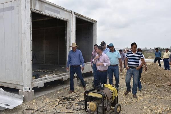 arroz centro guayas investigacion