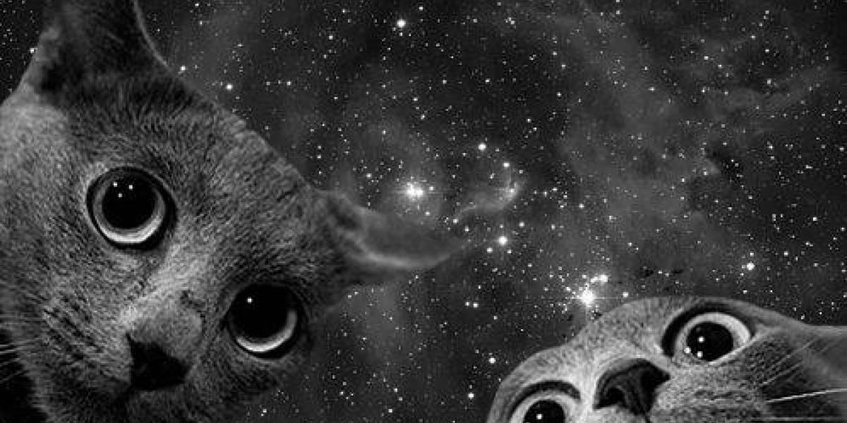 """NASA descubre 60 """"gatitos"""" recorriendo uno de los anillos de Saturno"""