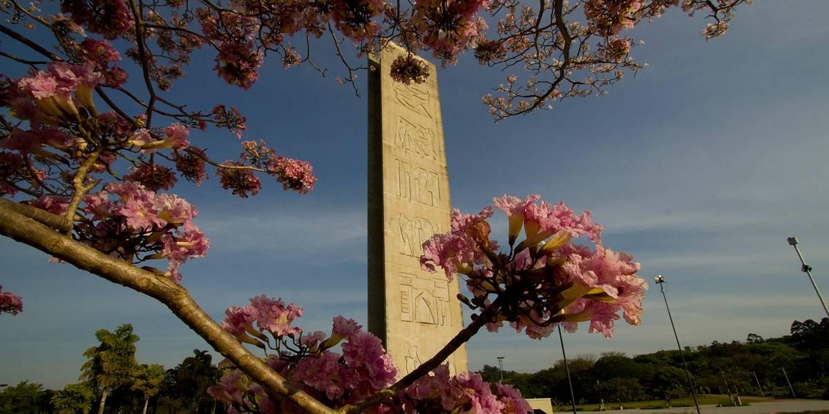 USP, Unicamp e mais oito universidades suspendem aulas
