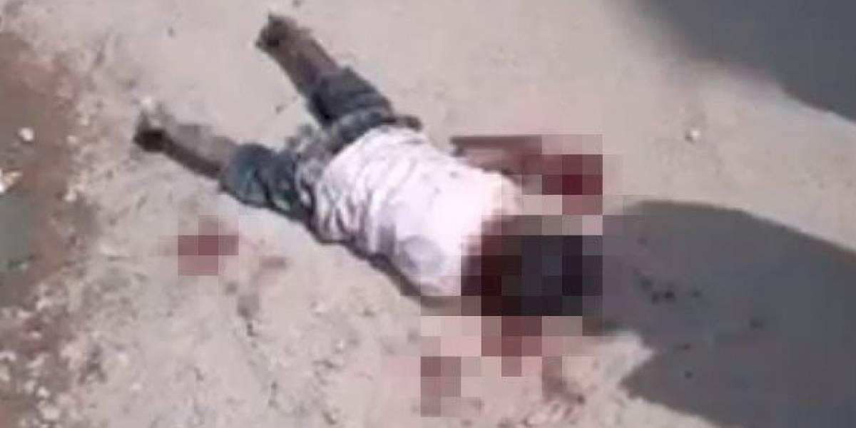 Perros callejeros asesinan a un niño en la India