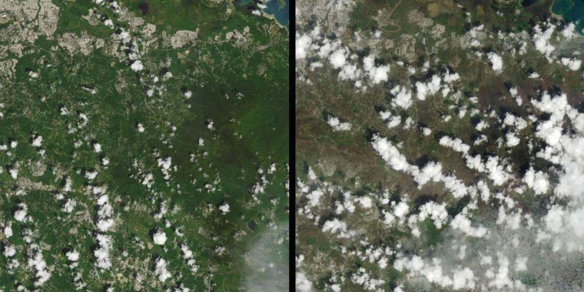 NASA revela imágenes de la deforestación de la isla tras María