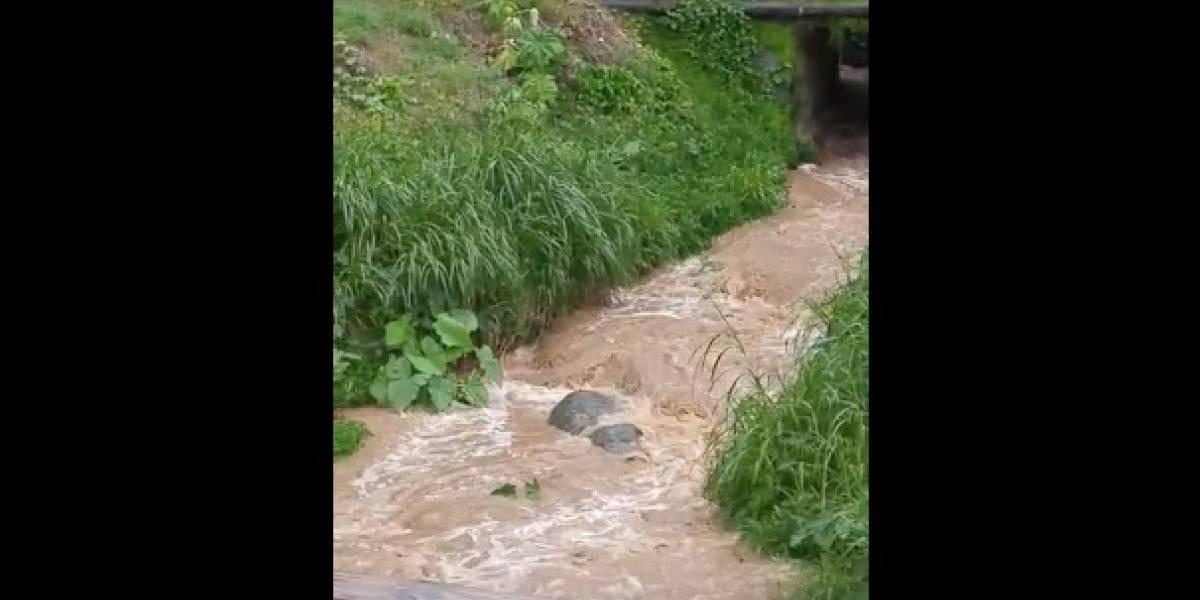 Hombre se ahoga en río de Adjuntas