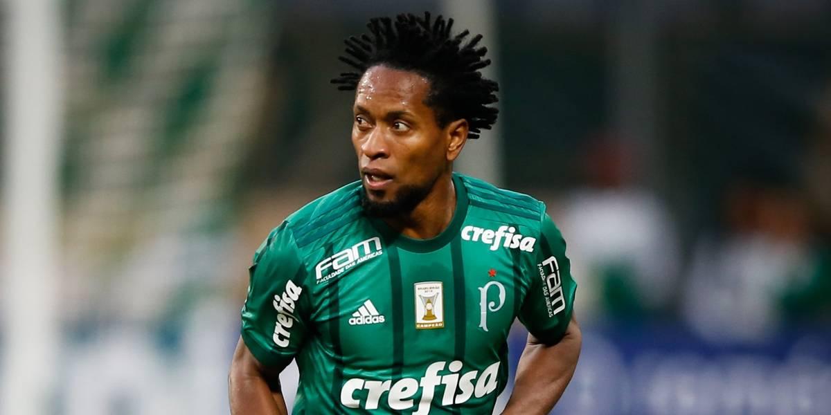 Zé Roberto será assessor técnico do Palmeiras a partir de janeiro