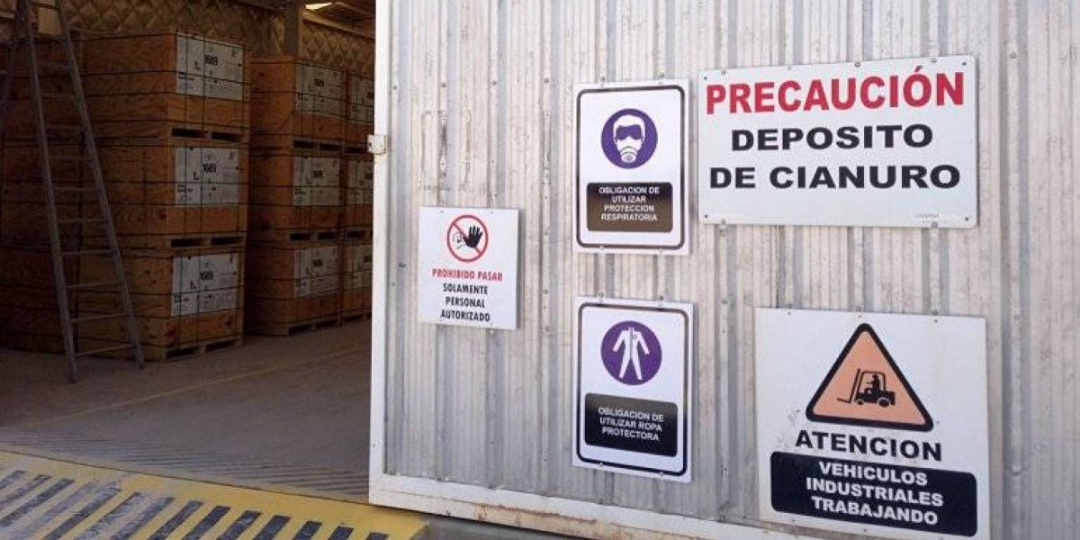 Autoridades de salud analizarán medidas para restringir acceso a cianuro