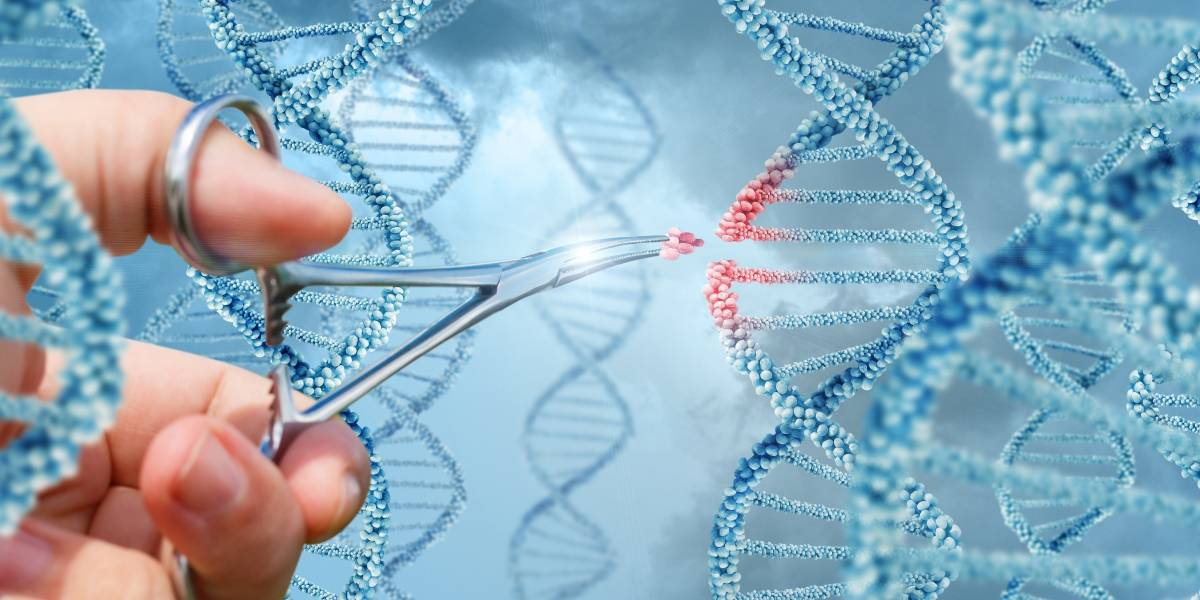 Reprogramación genética: ¿una alternativa viable para combatir enfermedades?