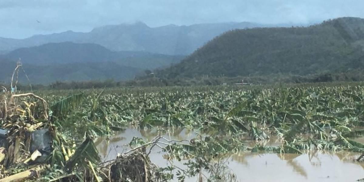 Piden ayuda al gobierno federal para asistir a agricultores locales