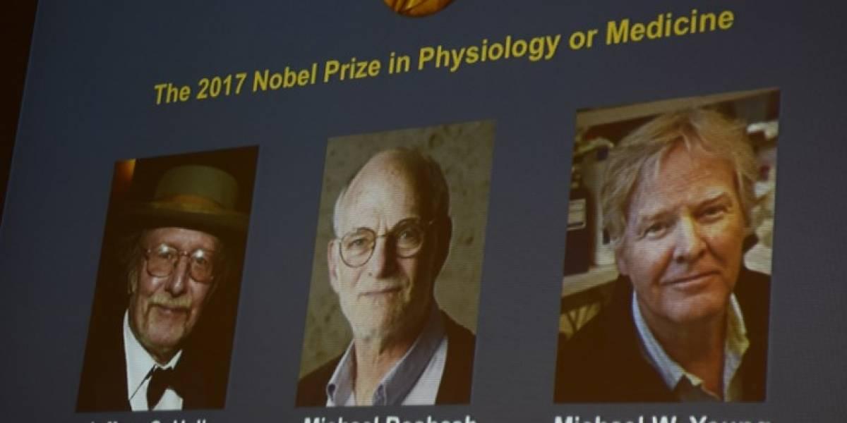 """Investigadores estadounidenses ganaron Nobel de Medicina por explicar cómo funciona el """"reloj biológico"""""""