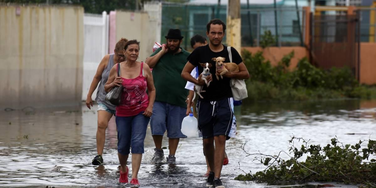 Llega a Florida crucero humanitario con miles evacuados por huracanes