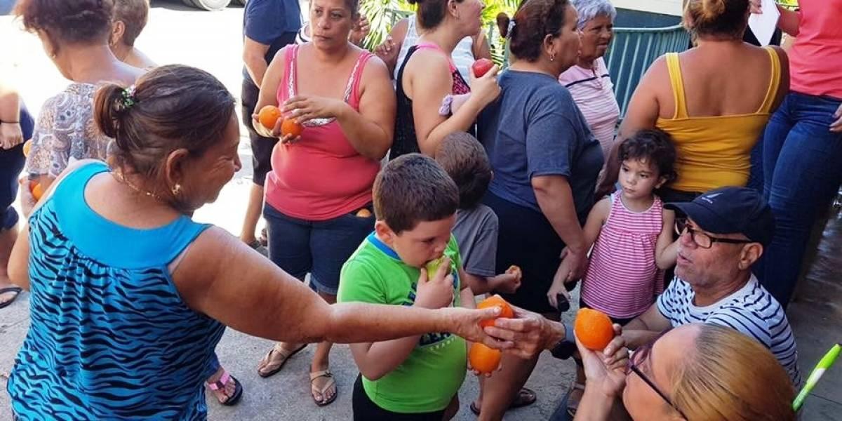 Entidad trae ayuda dirigida a los niños e infantes de la isla